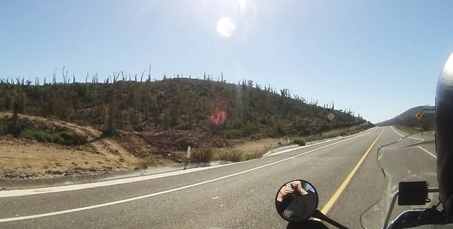 road to Guerro Negro
