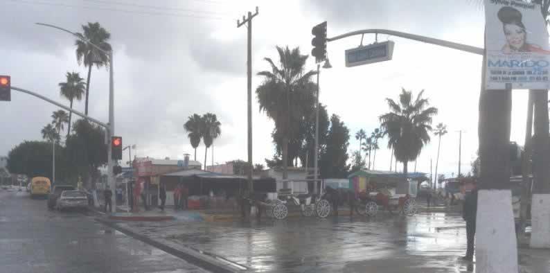 wet horses in Ensenada